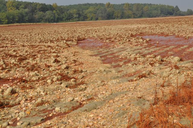 Soil with red mud