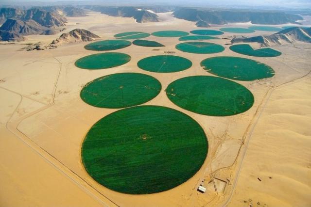 Jordániai sivatagi öntözés