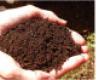 Vegyi anyagok hatása talaj szénanyagcseréjére